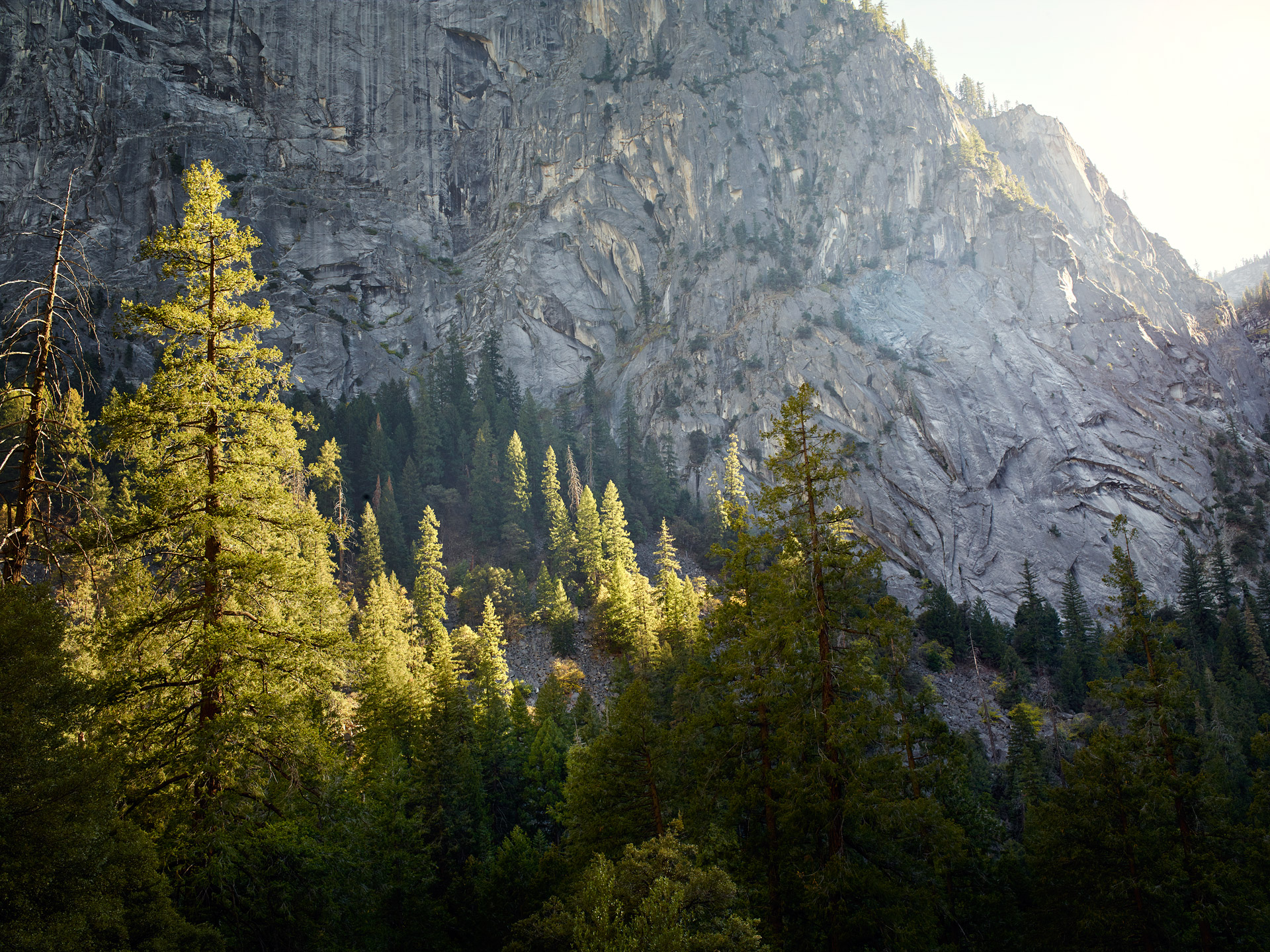 Yosemite_CF006416
