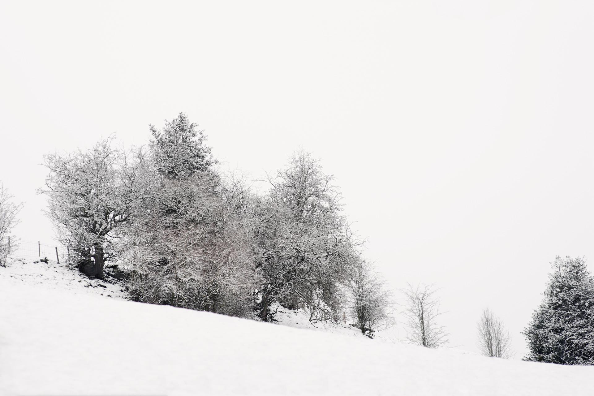 arc_snow_03