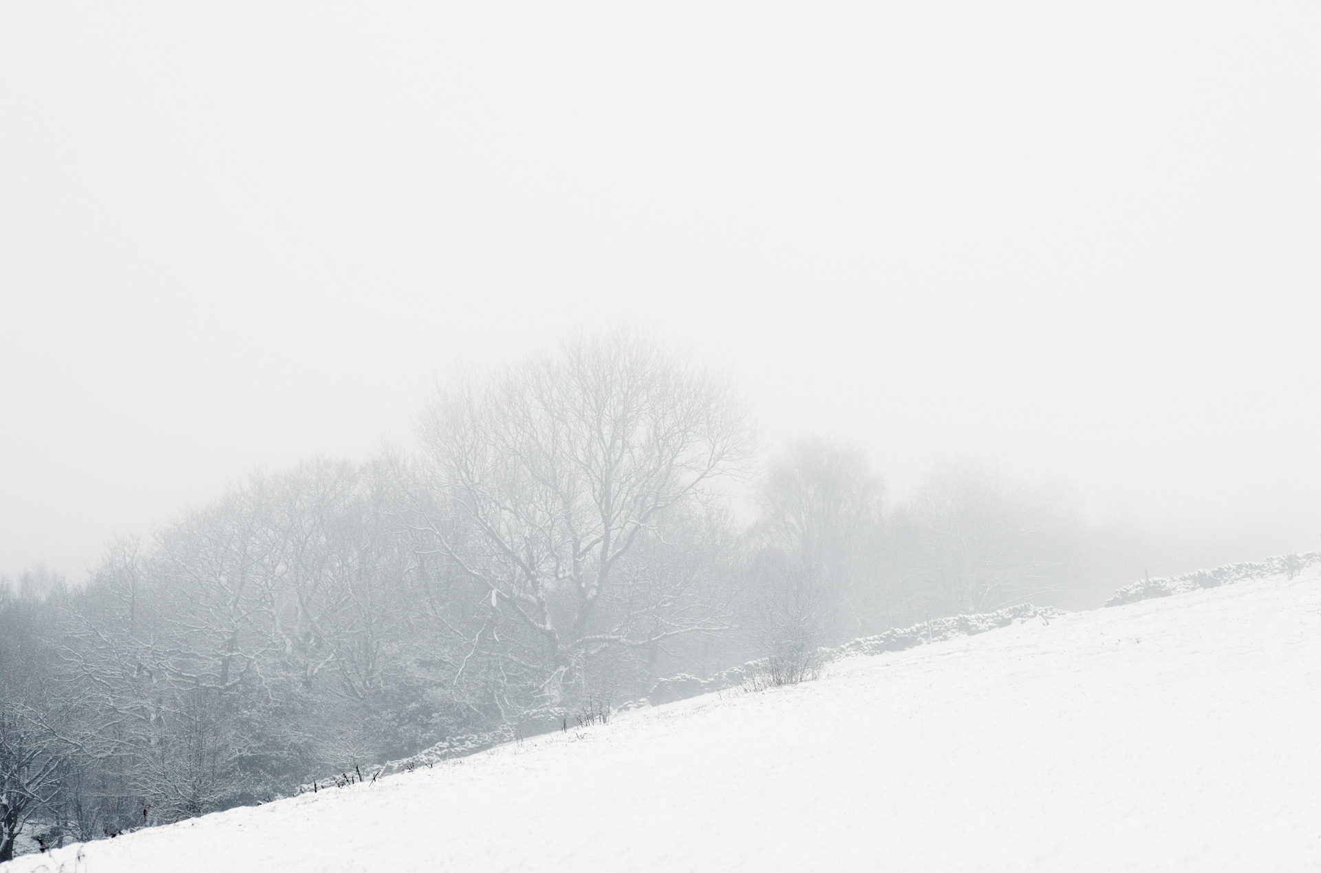 arc_snow_06